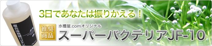 【推奨商品】水槽屋.comオリジナル スーパーバクテリアJF-10